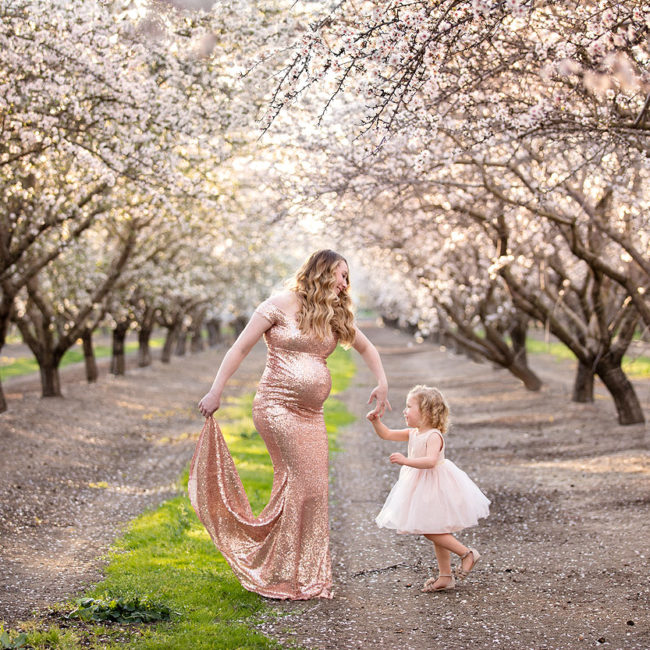 pregnancy photographer vacaville cherry blossoms